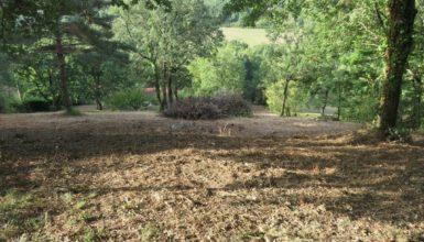 terrain Saix